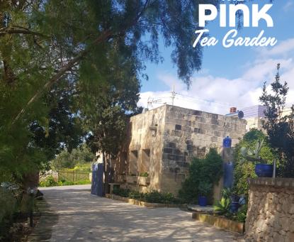 The Pink Tea Garden