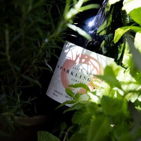 Sparkling Tea Apericena by Farmer's Deli Organic Bistro